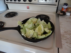 cabbage dec harvest 2 (2)