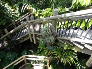 botanic grden stairs