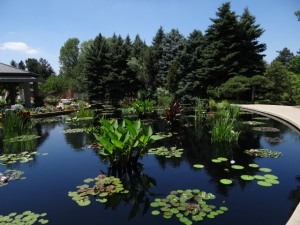 Denver Botanic monet