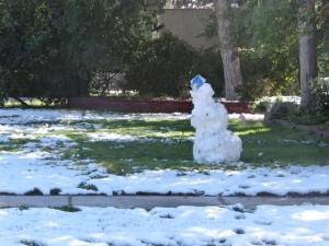 snowman - Copy